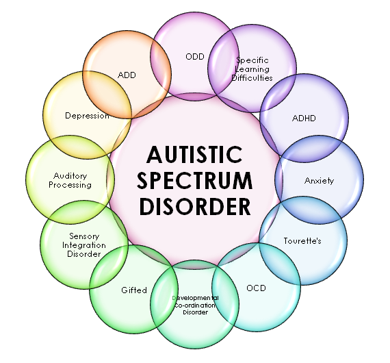 Autism Spectrum Disorder Test